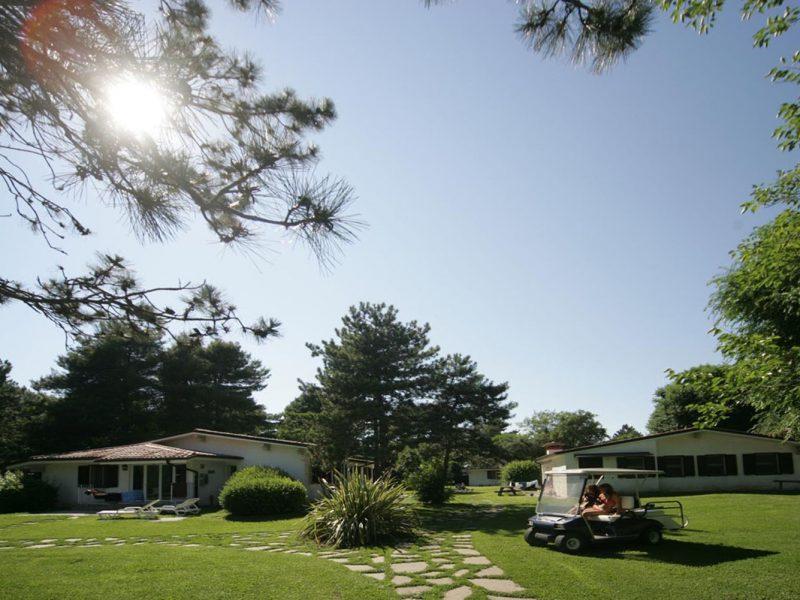 Accommodatie bungalow vakantiepark