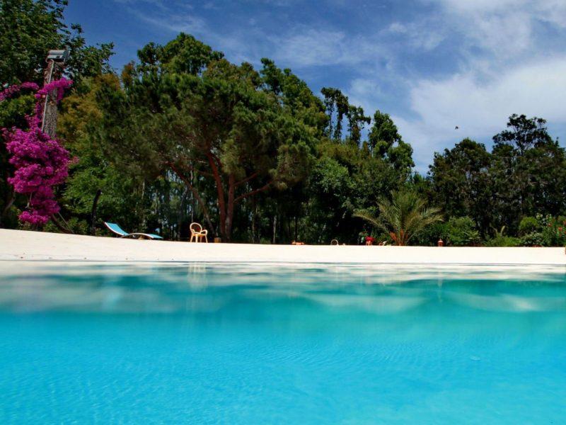 L'Ultima Spiaggia zwembad bomen