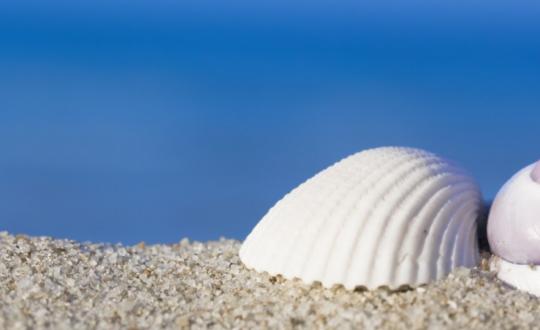 Stukje Sardijns strand meenemen? Boete!