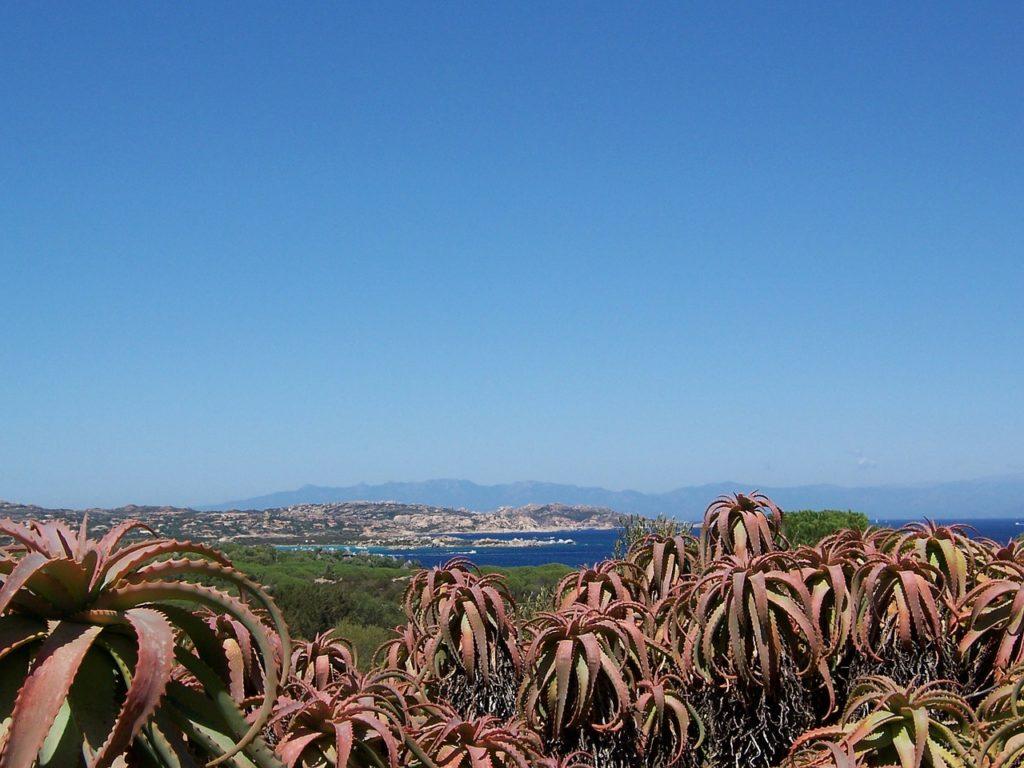 Caprera Sardinië