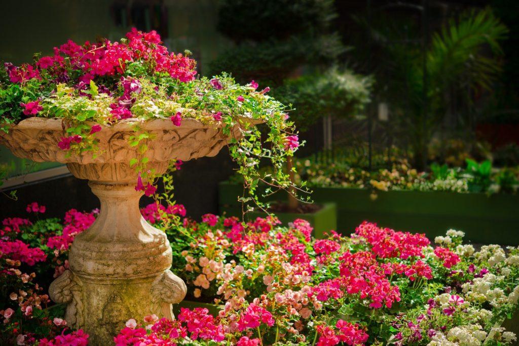 De Must-sees, de botanische tuin