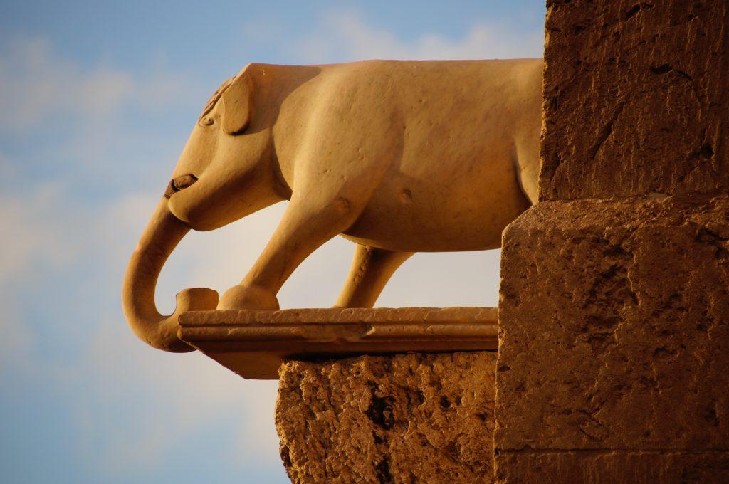 Mooi uitzicht vanaf de olifantentoren